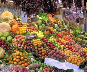 penang van rental - penang tropical fruit farm (5)