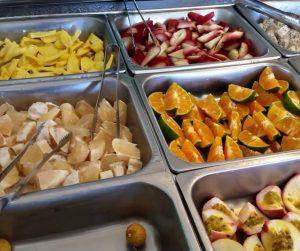 penang van rental - penang tropical fruit farm (7)
