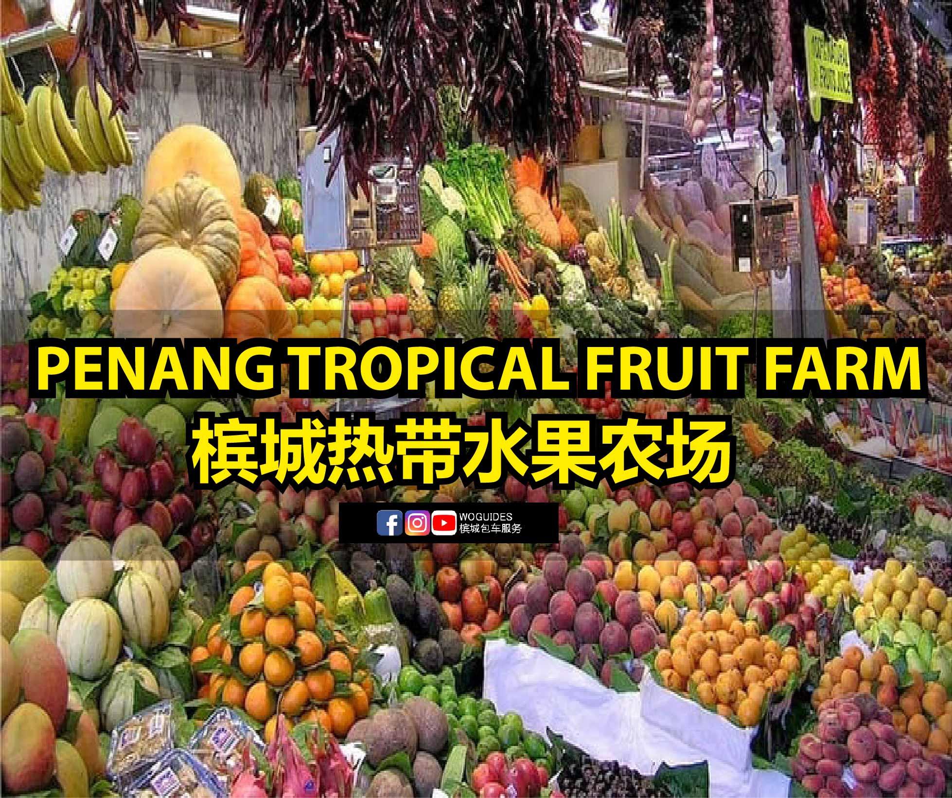penang van rental - penang tropical fruit farm (cover)