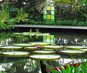 penang van rental - penang tropical spice garden (5)