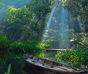 penang van rental - penang tropical spice garden (7)