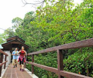 penang van rental - penang national park (5)
