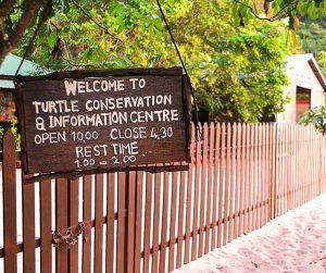 penang van rental - penang national park (6)