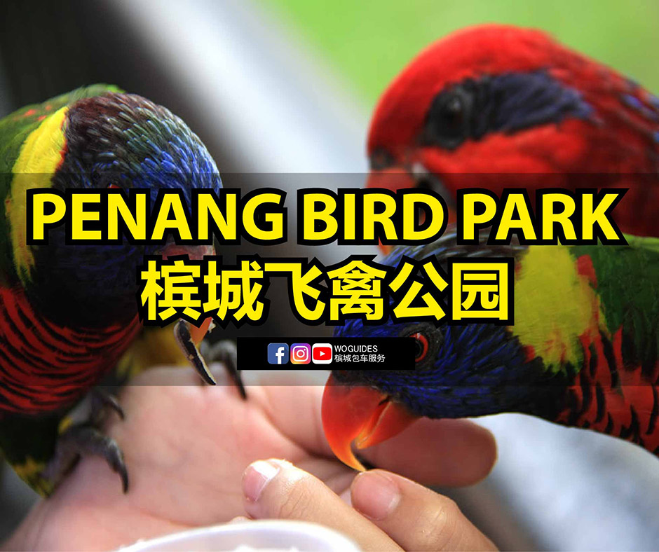 Penang Van Rental - Penang Bird Park (cover)