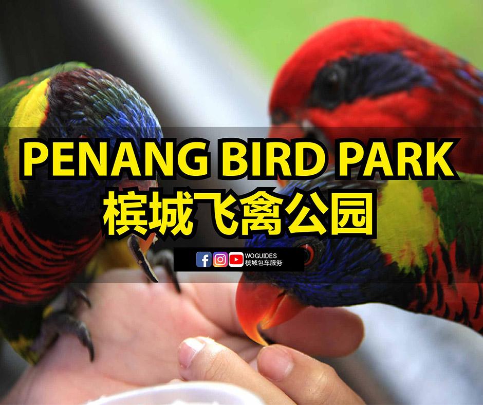 Penang Van Rental - Penang Bird Park (cover)