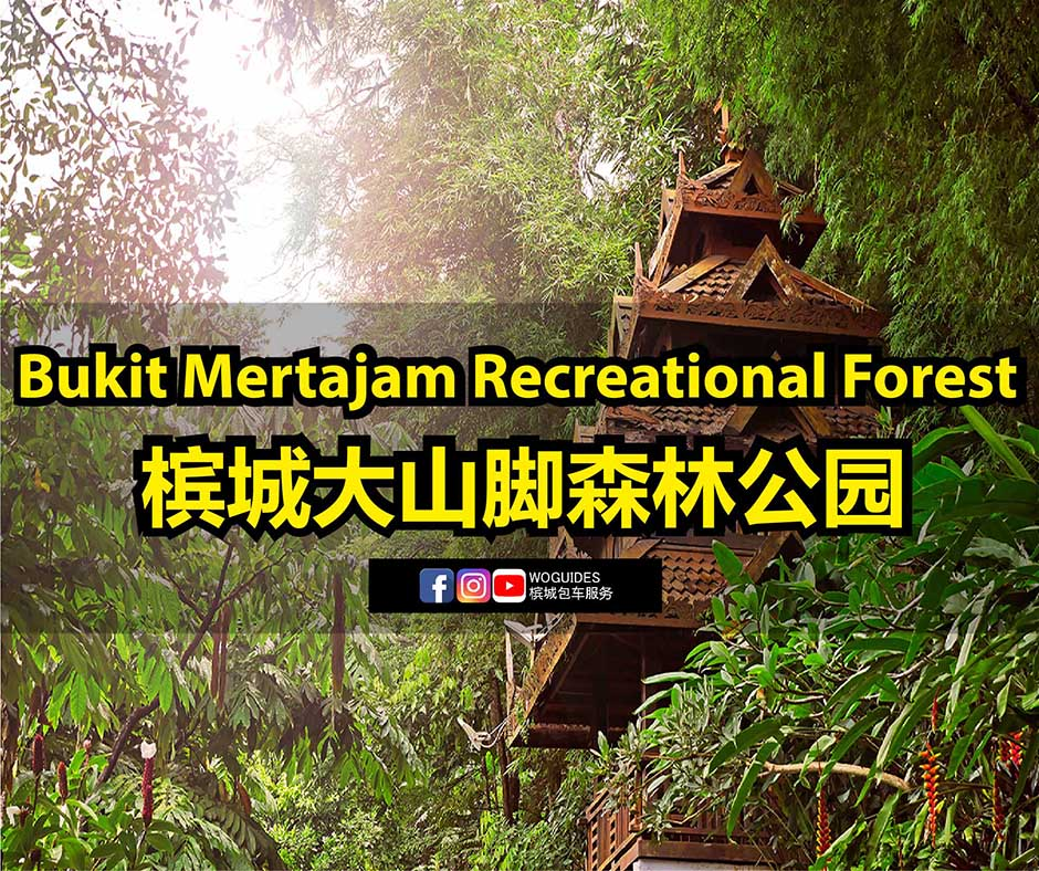 penang van rental - Bukit Mertajam Recreational Forest (cover)