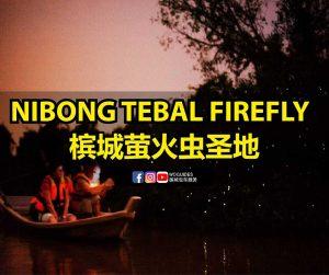 penang van rental - nibong tebal firefly (cover)